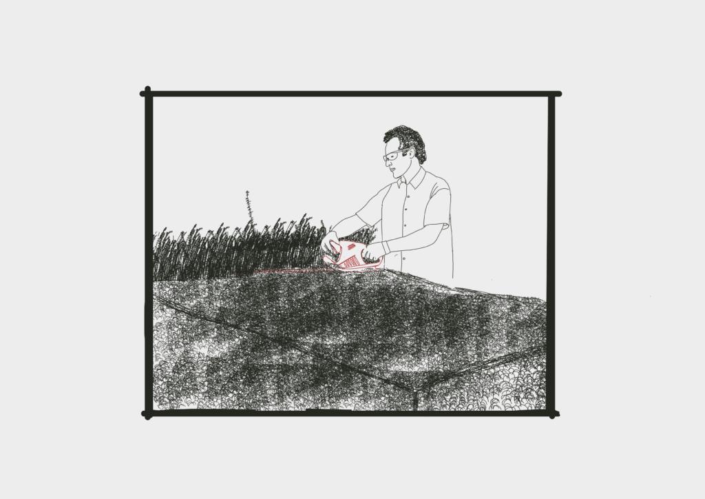 Gärtner trimmt Hecke, als Symbol für Datenbanken.